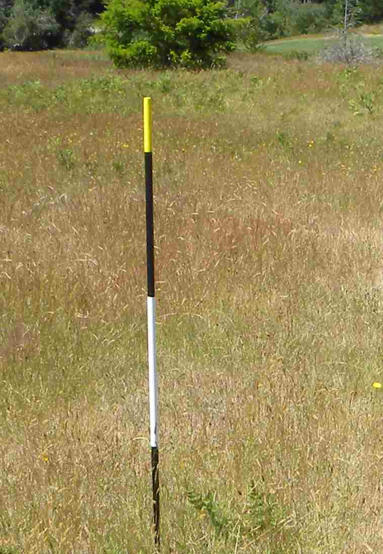 Gold Tee Marker tall3